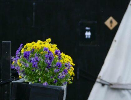 Saunalautan kukat ja pukuhuoneen merkki saunalautan seinässä
